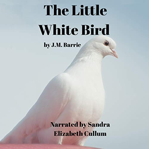 Couverture de The Little White Bird