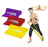 WOTEK Gomas Elasticas Fitness, 3 Piezas Cintas Elasticas Musculacion con 3 Niveles Banda de Resistencia para Yoga, Pilates, Crossfit, Musculacion