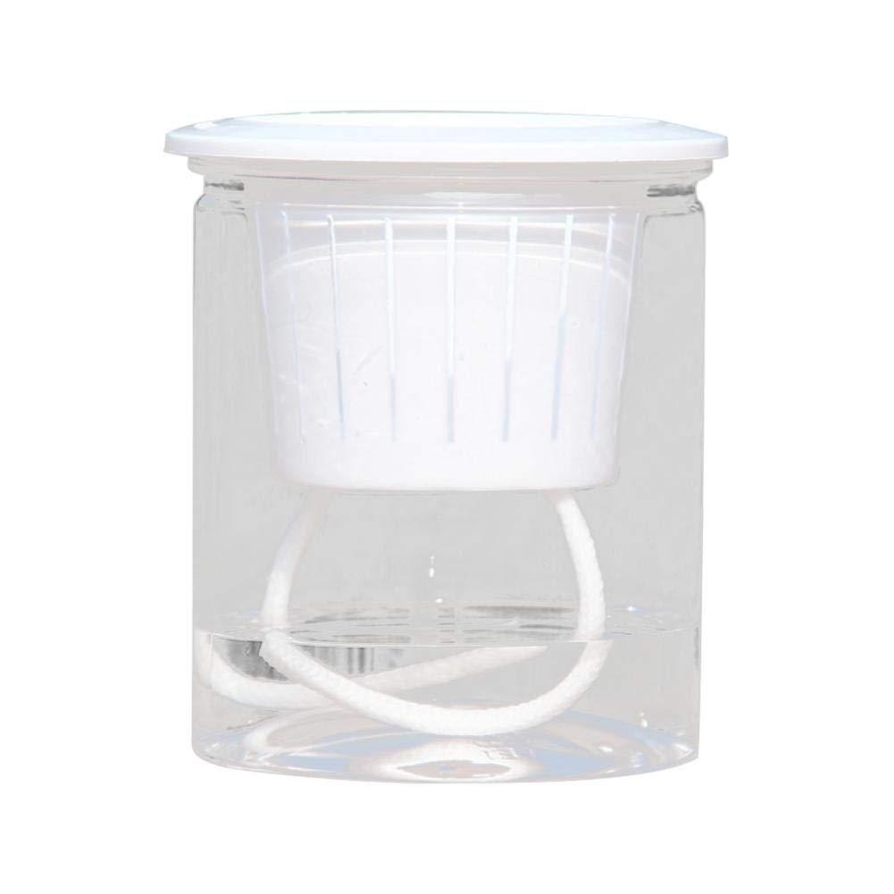 Ritapreaty Conjunto de 5pcs Maceta Absorción automática de Agua ...