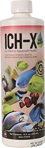 Hikari Usa AHK73316 Salt water Ich-X for Aquarium, 16-Ounce