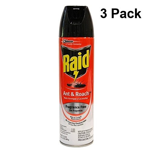 Raid Ant & Roach Killer Insecticide Spray 17.5 oz (3 Cans - Value)