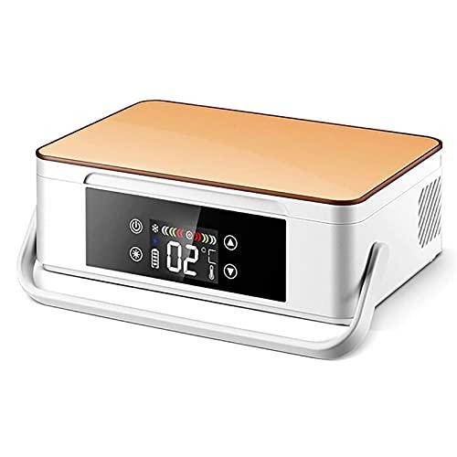 WANYE Refrigerador Insulina PortáTil, Mini Refrigerador Refrigerador Refrigerador para AutomóViles, RefrigeracióN En Casa LCD Inteligente, Refrigerador PequeñO Recargable