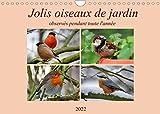 Jolis oiseaux de jardin (Calendrier mural 2022 DIN A4...