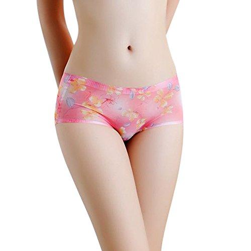 Eaylis Damen Niedriger Taillenaufdruck UnterwäSche Spitze Unterhosen Elegance Reizvolles ReizwäSche Slip Mit Transparente