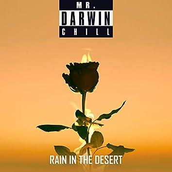 Rain In The Desert (feat. Martina Majerle)