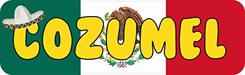 StickerTalk Cozumel Mexico Vinyl Sticker, 10 inches by 3 inches