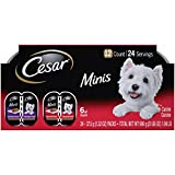 CESAR Minis Wet Dog Food Tender Loaf in Sauce Variety Pack, Filet Mignon Flavor and Angus Beef...