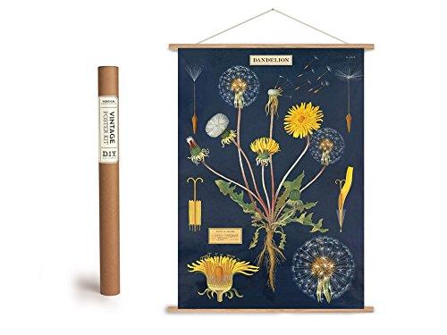 Vintage Poster Set mit Holzleisten (Rahmen) und Schnur zum Aufhängen, Motiv Löwenzahn, Pusteblume, Dandelion