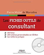 Les fiches outils du consultant - 150 fiches. 200 schémas personnalisables sur cd-rom. Les meilleures pratiques. de Pierre-Michel Do Marcolino