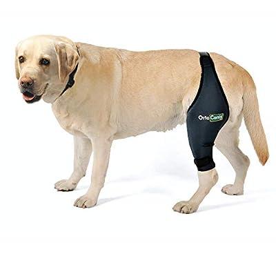 Ortocanis Kniebandage für Hunde - Bein Links - größe XL - Oberschenkelumfang 37-41 cm