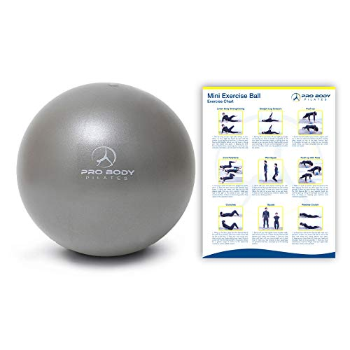 ProBody Pilates Ball Workout Ball - 9 Inch Mini Physical Therapy Ball for Stability, Barre, Yoga, Bender, Balance, Core Training, Recovery Small Exercise Ball for Between Knees (Silver)