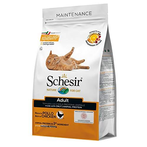 Schesir Cat Adult Maintenance Huhn, Katzenfutter trocken für Erwachsene Katzen, Trockenfutter im Beutel, 1er Pack (1 x 400 g)