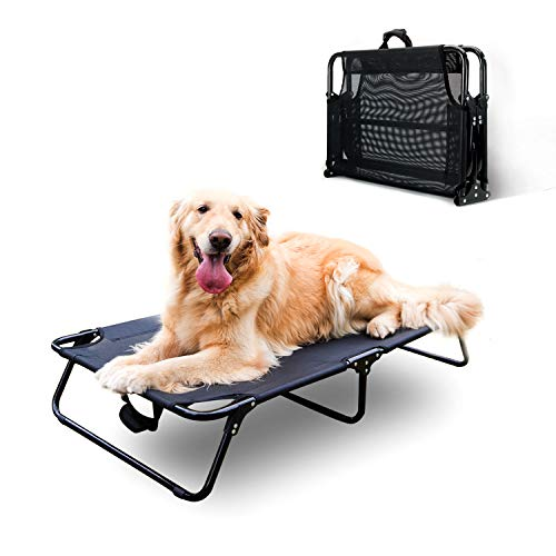 HIPET Elevated Dog Bed