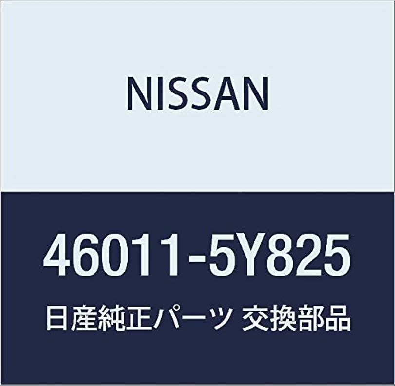 ペック地質学立法NISSAN(ニッサン) 日産純正部品 リペアー キツト B/M 46011-5Y825