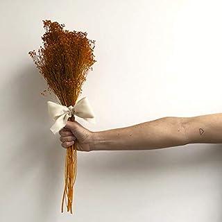RAMO DE BROOMS PRESS NARANJA. Ramo de flores secas. Decoración del hogar eterna.