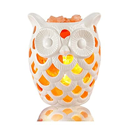 I'm Back Himalayan Salt Lamp With Rock Salt, Crystal Rocks Lamp With Ceramic Lamp Shade+Brightness Dimmable Control,Base No Need,Owl (3-5lb)