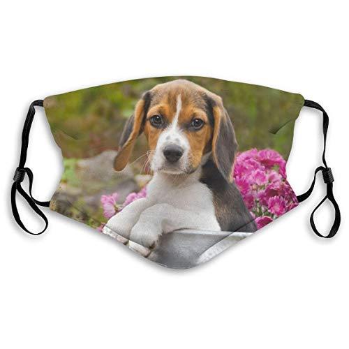 Cubierta de decoración de Cara de Tela Divertida para Adultos Lindo Cachorro de Perro Beagle Tricolor en una batidora de Leche Bandana de protección Facial Reutilizable Lavable con Filtro de carbón