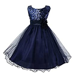Dark Blue Sequin Mesh Tull Dress Sleeveless With Rose