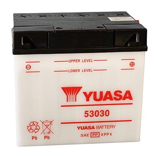 Batteria standard Yuasa 53030 12 V 30 Ah 180 CCA