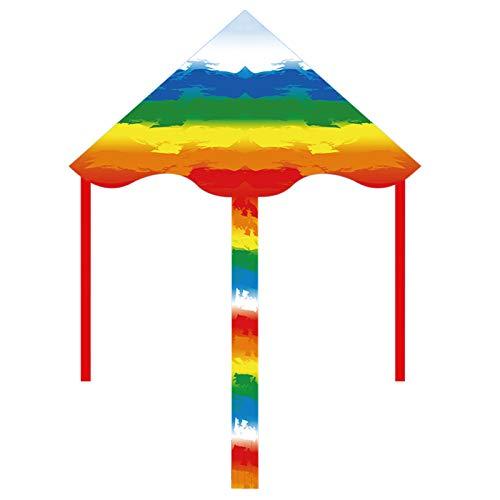DPPAN kitepaket vacker stor lättflyerdrake för barn! 39 tum bred med lång svans 80 cm lång perfekt för strand eller park av, färg_400 m nudel