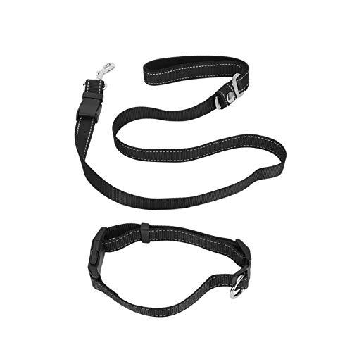 Zhivafip Cinturón de Seguridad para el automóvil para Mascotas, cinturón de Seguridad para Mascotas Resistente al Desgaste con Hebilla Invisible para el automóvil para Caminar, IR a casa y al Aire