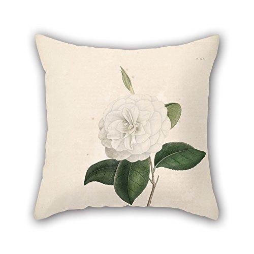 elegancebeauty flores manta funda de almohada, mejor para adolescentes Niñas, familiares, sala de estar, coche, marido, Club 16x 16'/40por 40cm (dos lados)