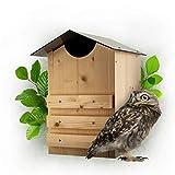 nidal caja nido Martenbrown® búho búhos I I I Eulenhaus Casa en Owl I cueva del búho I Nisthöhle I búhos caja lechuzas cuadro I I I búhos caja nido pajarera búho