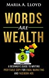 Words Are Wealth: A Beginner's Guide to Writing Profitable Copy for Email Marketing and Facebook Ads