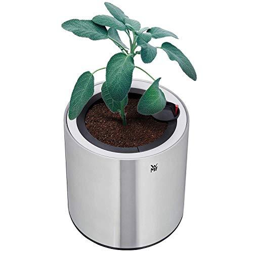 WMF Ambient Kräuter home Single Kräutergarten elektrisch (für 1 Blumentopf, Kräutertopf mit Selbstbewässerungssystem bis zu 4 Tage, Easy touch LED Beleuchtung)