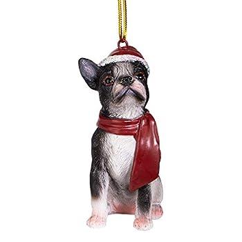 Best boston terrier christmas Reviews