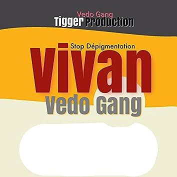 Vivan (VIP Mix)