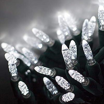 Wintergreen Lighting M5 LED Christmas Lights, Christmas Tree Lights LED Mini Christmas Lights on Green Wire