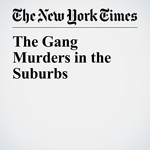 The Gang Murders in the Suburbs audiobook cover art