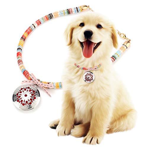 犬 2pcs Collar Ajustable para Perro Mascota Garrapatas Flea Anti-Mosquitos Repelente Collar Anti-Lost M 0304