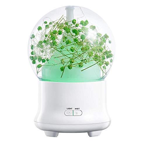 Aroma diffuser met kristallen bol nachtlampje bont aroma luchtbevochtiger eeuwige bloem droge bloem Groen