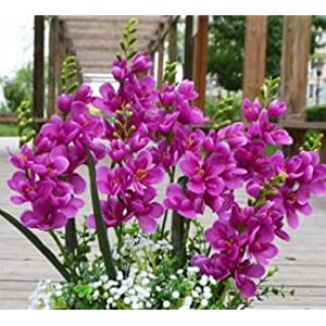 Silk Flower Arrangements Artificial and Dried Flower 18pcs Per Lot Freesia Flower Fake Orchid Single Stem for Wedding Centerpieces Floral Arrangement Artificial Decorative Flowers - ( Color: Fuchsia )