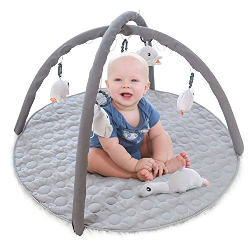 ANGELBLISS Infant Activity Gym and Baby Play Mat for Tummy Time, Educational Play Activity Center Stimulation Baby's Growth, Shower Gift for 0-18 Months Newborn (Grey)