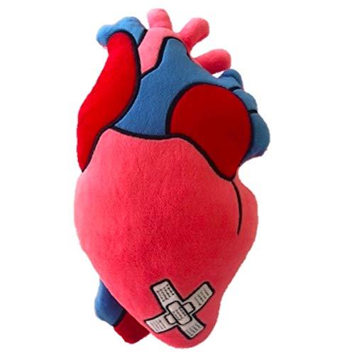 Stuffed Plush Anatomical Heart Pillow