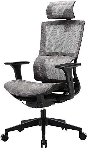 SIHOO Sedia da Ufficio Sedia Ergonomica Sedia da Scrivania per Computer con Schienale Alto, Sedia in Rete Girevole, Braccioli Regolabili 3D, Supporto Lombare Elastico Unico (Grigio)