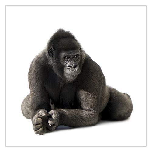 Vliestapete Gorilla I, HxB: 192cm x 192cm