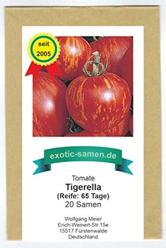 Tigerella - rot-gelb gestreifte Stab-Tomate - alte Sorte - 20 Samen