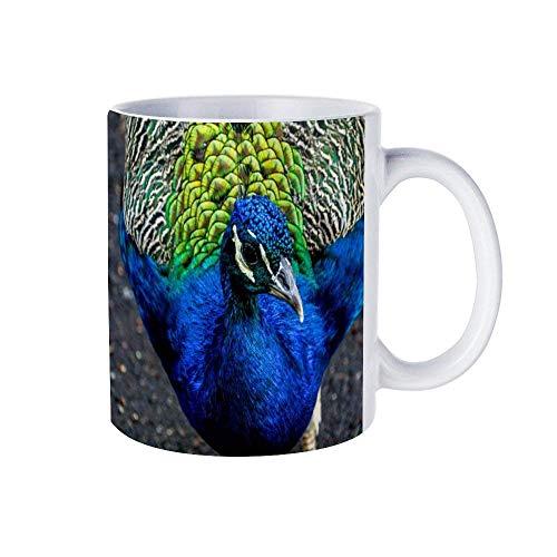 N\A Tazas de café Blancas de 11 oz, Taza de Chocolate de cerámica de Pavo Real Azul y Gris para Mujer, Jefe, Amigo, Empleado o cónyuge