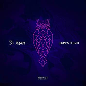 Owl´s Flight