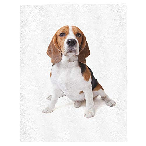 Kpdar Flannel Blanket 3D Printed blankets Soft Warm Flannel Fleece Throw Blanket for Bed Couch Camping and Travel—Animal Cute Dog Beagle Brown 80x120 cm