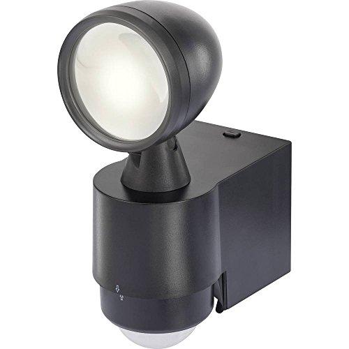 Renkforce Cadiz 1W LED schijnwerper met bewegingsmelder neutraal wit