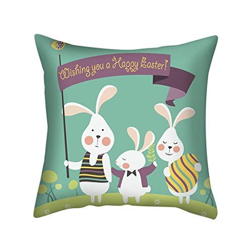 LEEDY - Funda de cojín, diseño de Huevos de Pascua, Cuadrada, para sofá, Dormitorio, Sala de Estar, Festival, mármol, algodón Mixto, C, 45 x 45 cm
