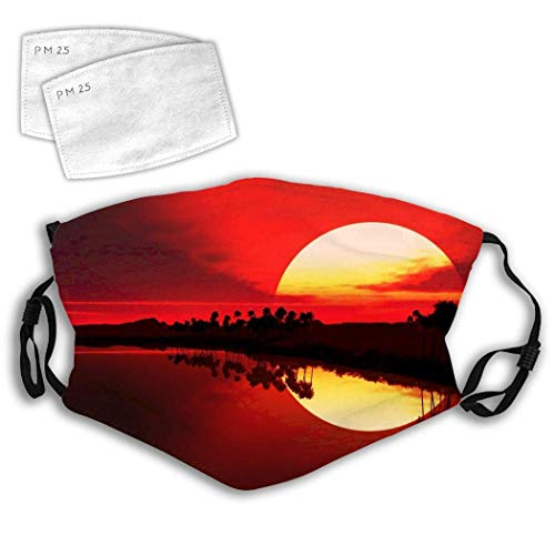 Reusable Washable Gauze Cover with Filters,Earloop Half Mouth,Dusk Background