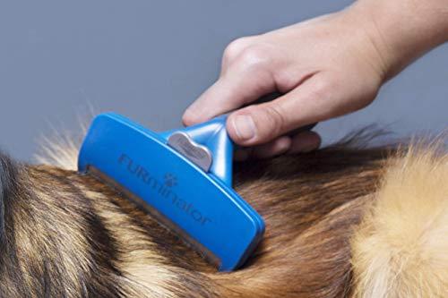 Furminator Undercoat deShedding - Cepillo para perros grandes de pelo largo