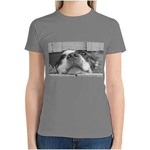 Frauen Baumwolle Hund Im Zaun Stecken T-Shirt Sommer Freizeit - Pet Dog Wear Grey l