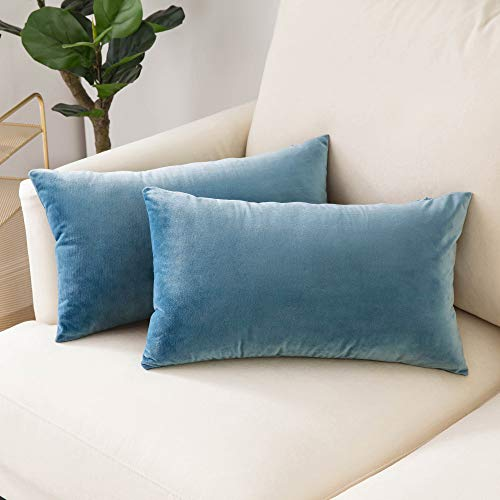 Woaboy Pack of 2 Velvet Throw Pillow Covers Decorative Pillowcases Solid Soft Cushion Covers Pillow Case Square Cojines for Couch Living Room Sofa Bedroom Car 12x20 inch 30x50cm Light Blue